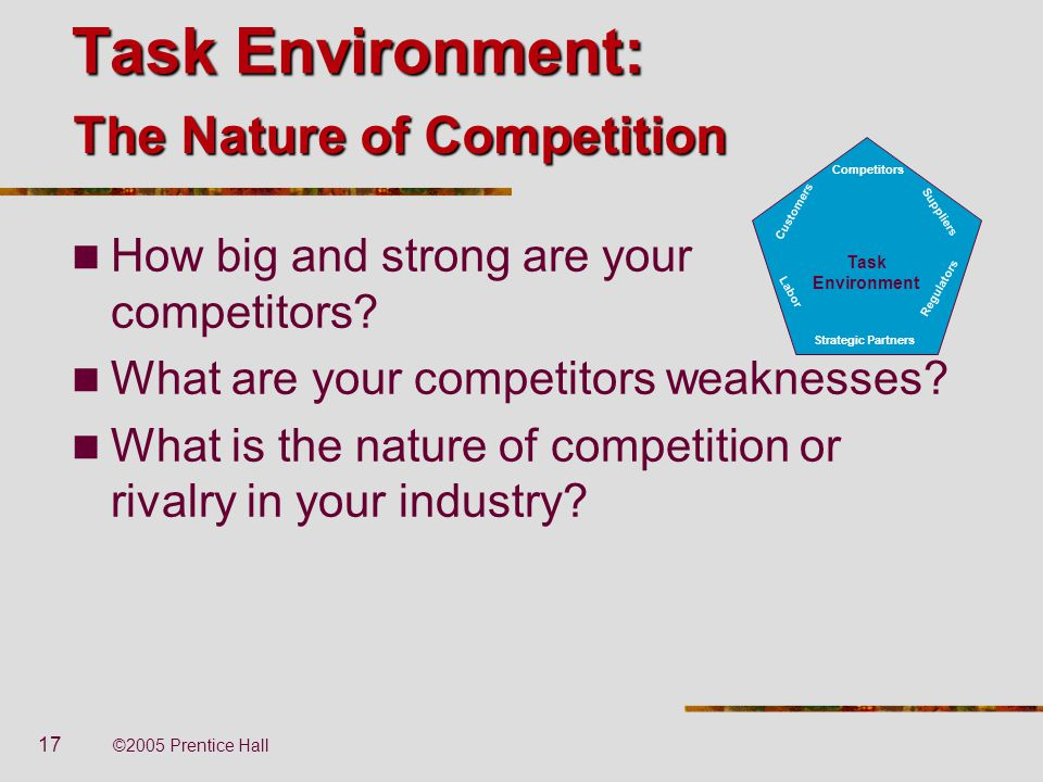Task Environment: The Nature of Competition