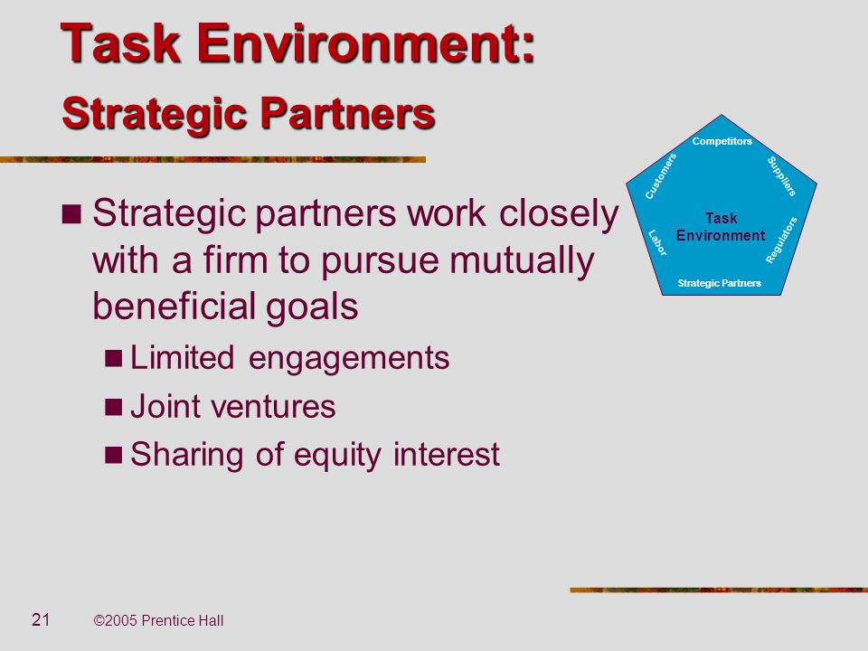 Task Environment: Strategic Partners