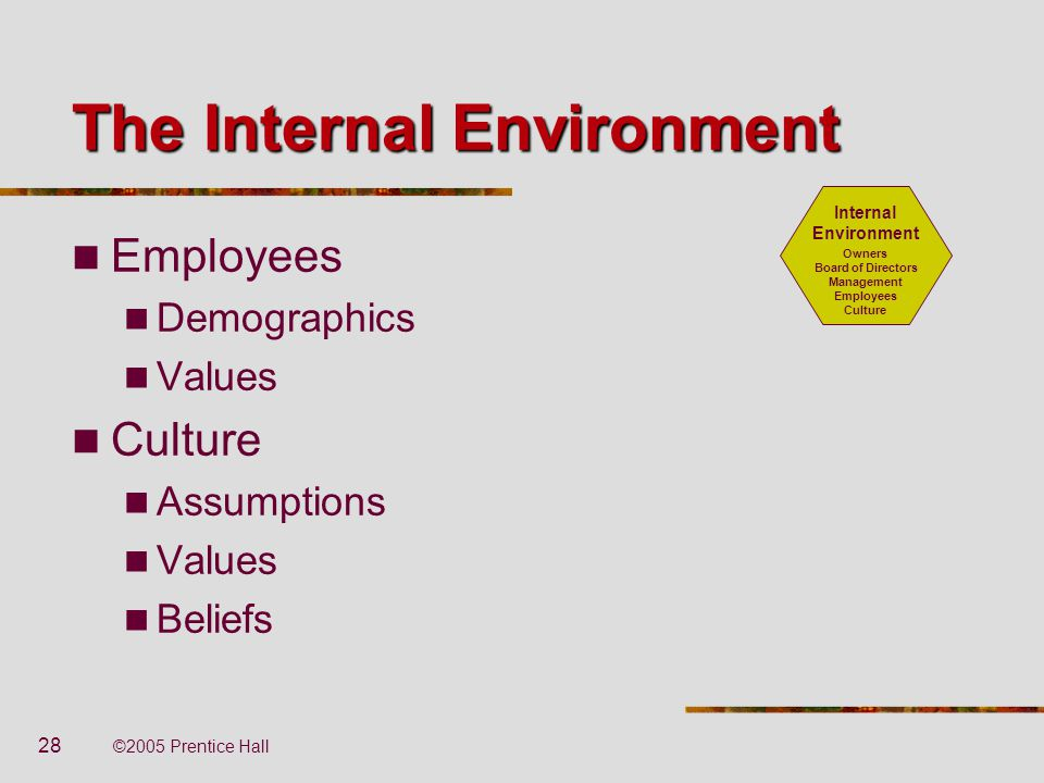 The Internal Environment