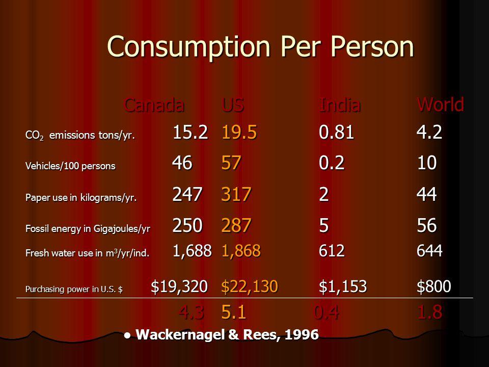 Consumption Per Person