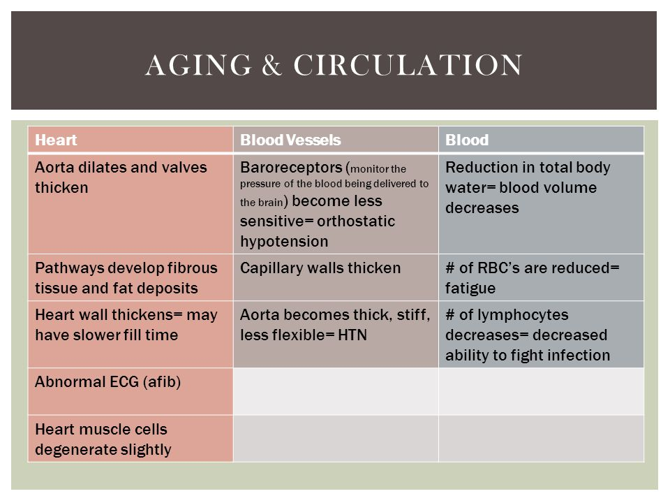 Aging & Circulation Heart Blood Vessels Blood