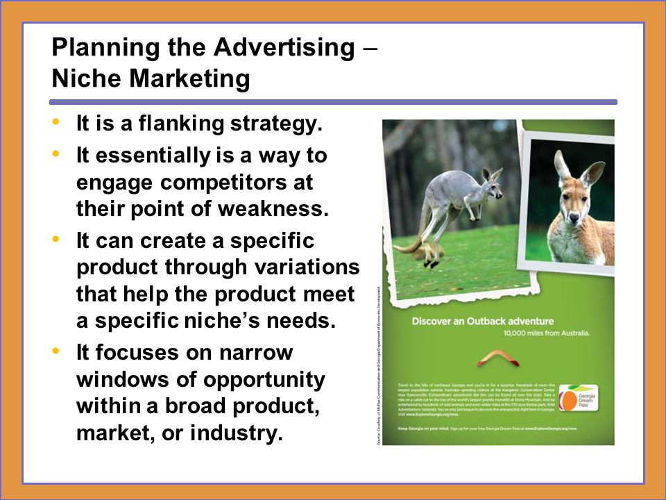 Planning the Advertising – Niche Marketing