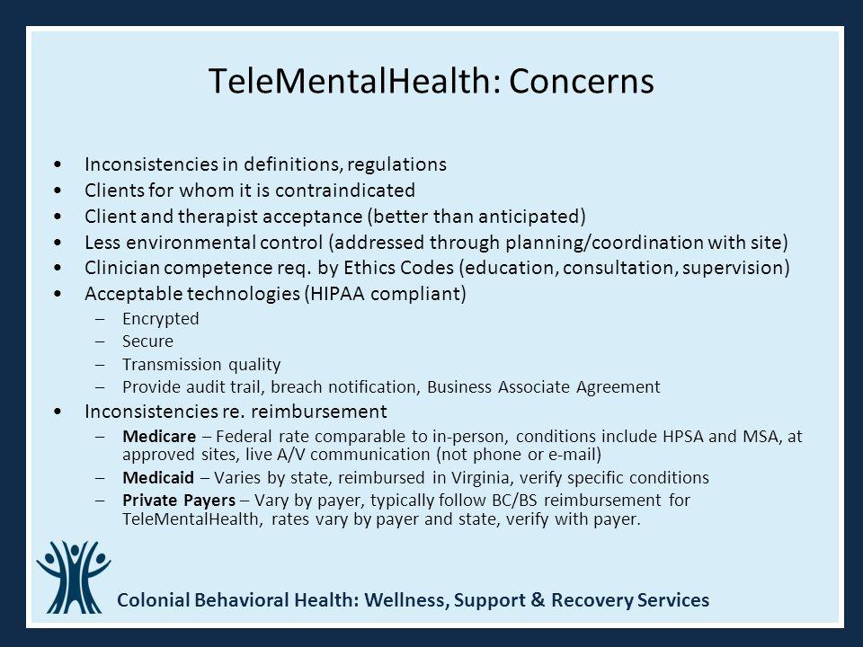 TeleMentalHealth: Concerns