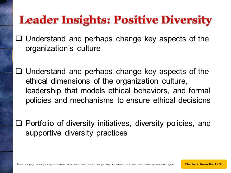 Leader Insights: Positive Diversity