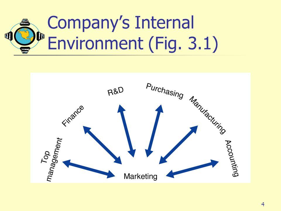 Company's Internal Environment (Fig. 3.1)