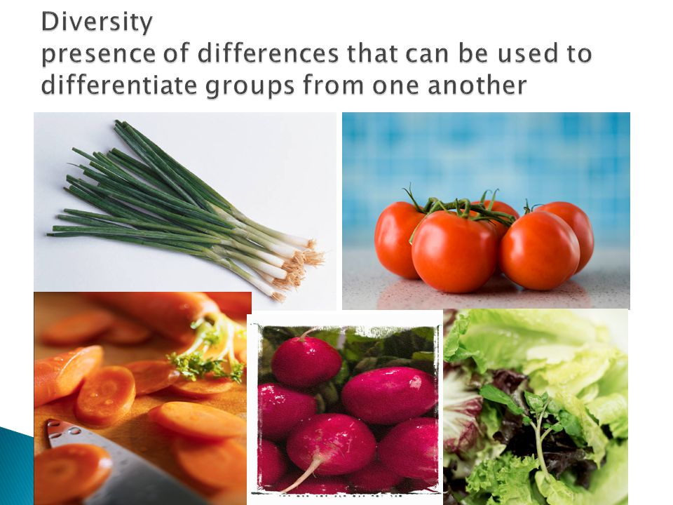 Diversity presence of differences that can be used to differentiate groups from one another