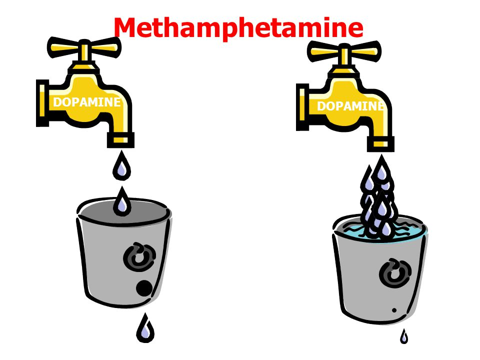 Methamphetamine DOPAMINE DOPAMINE