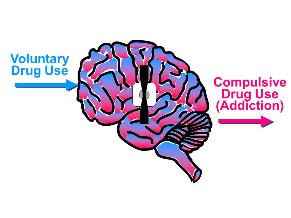 Voluntary Drug Use Compulsive Drug Use (Addiction)
