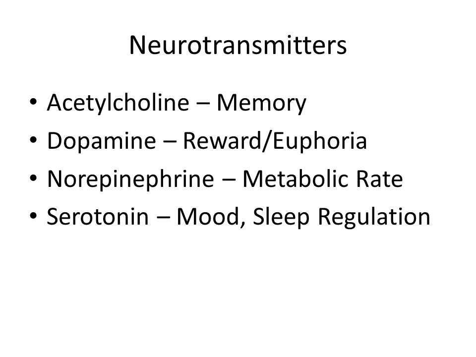 Neurotransmitters Acetylcholine – Memory Dopamine – Reward/Euphoria