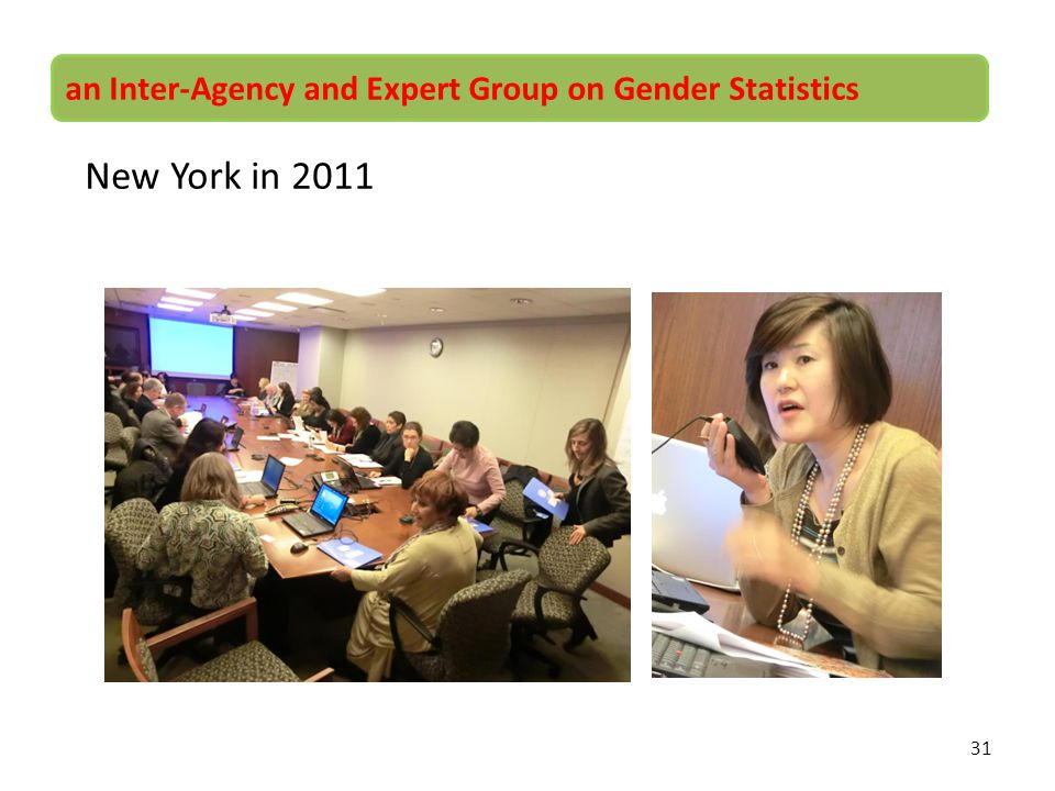 New York in 2011 an Inter-Agency and Expert Group on Gender Statistics