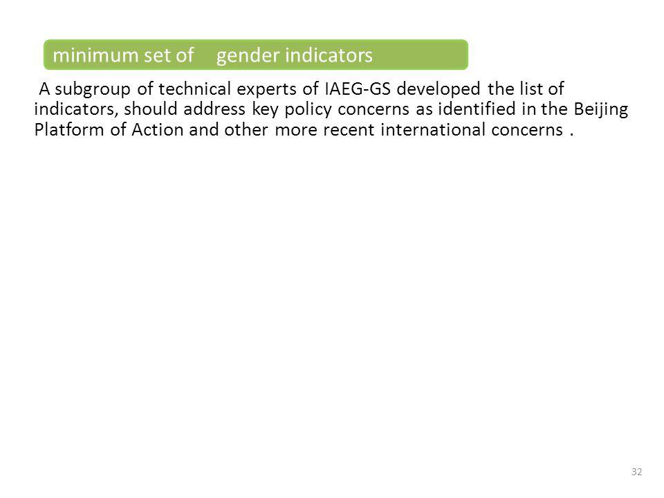 minimum set of gender indicators