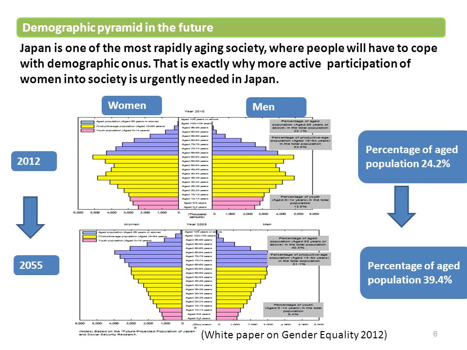 Demographic pyramid in the future
