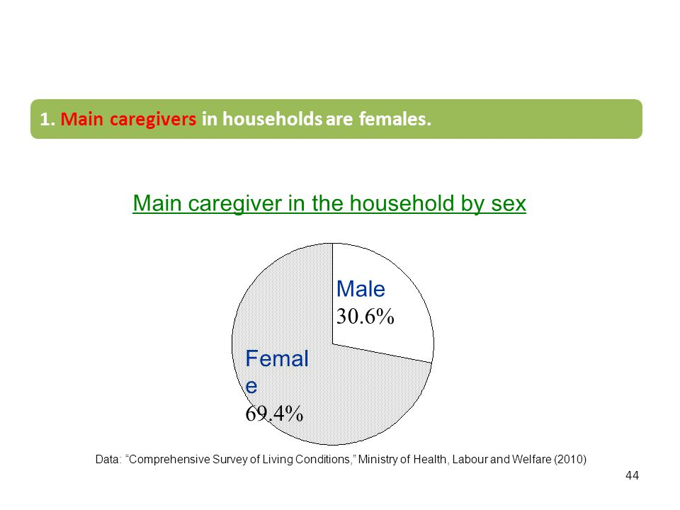 Main caregiver in the household by sex