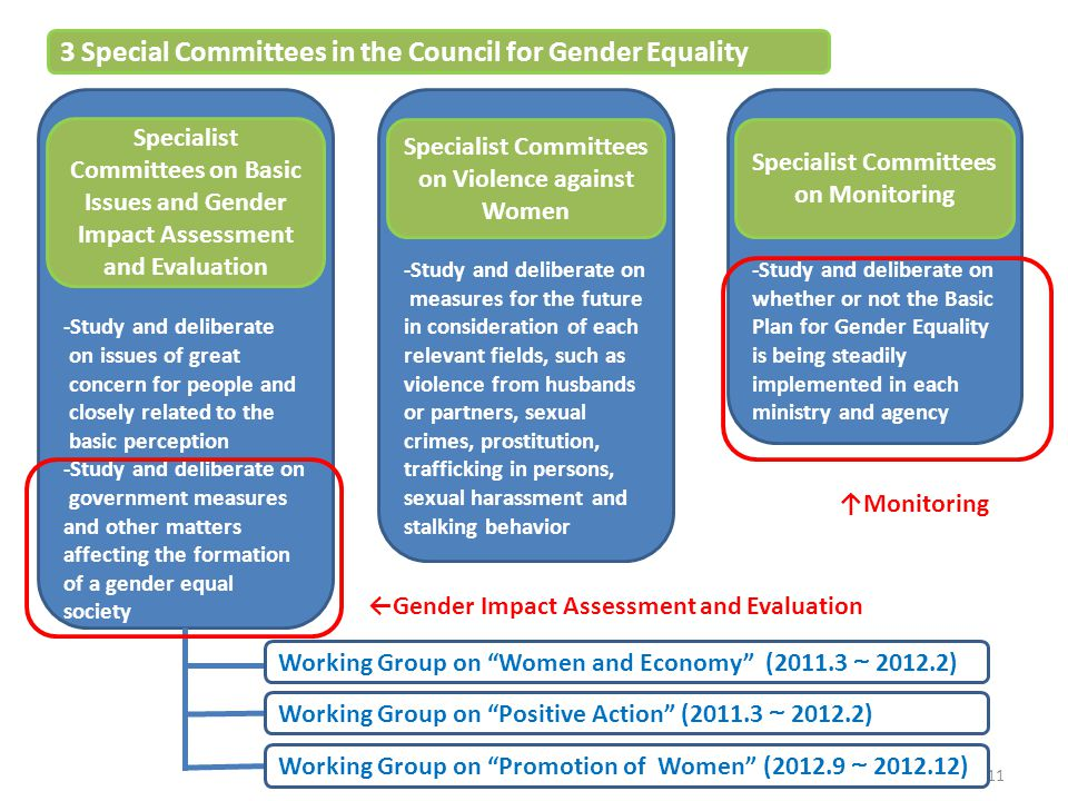 3 Special Committees in the Council for Gender Equality