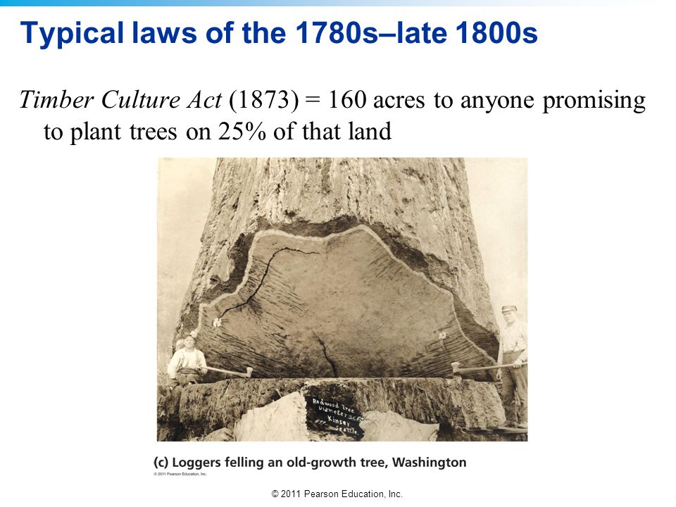 Typical laws of the 1780s–late 1800s