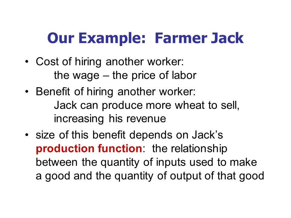 Farmer Jack's Production Function