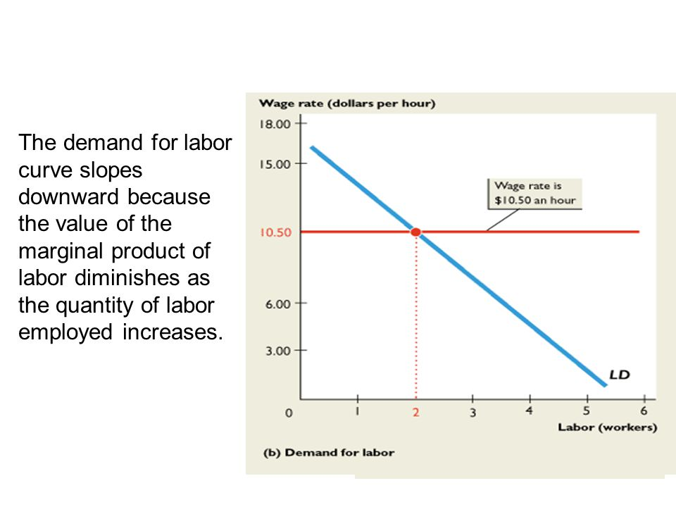The Marginal Revenue Product of Labor
