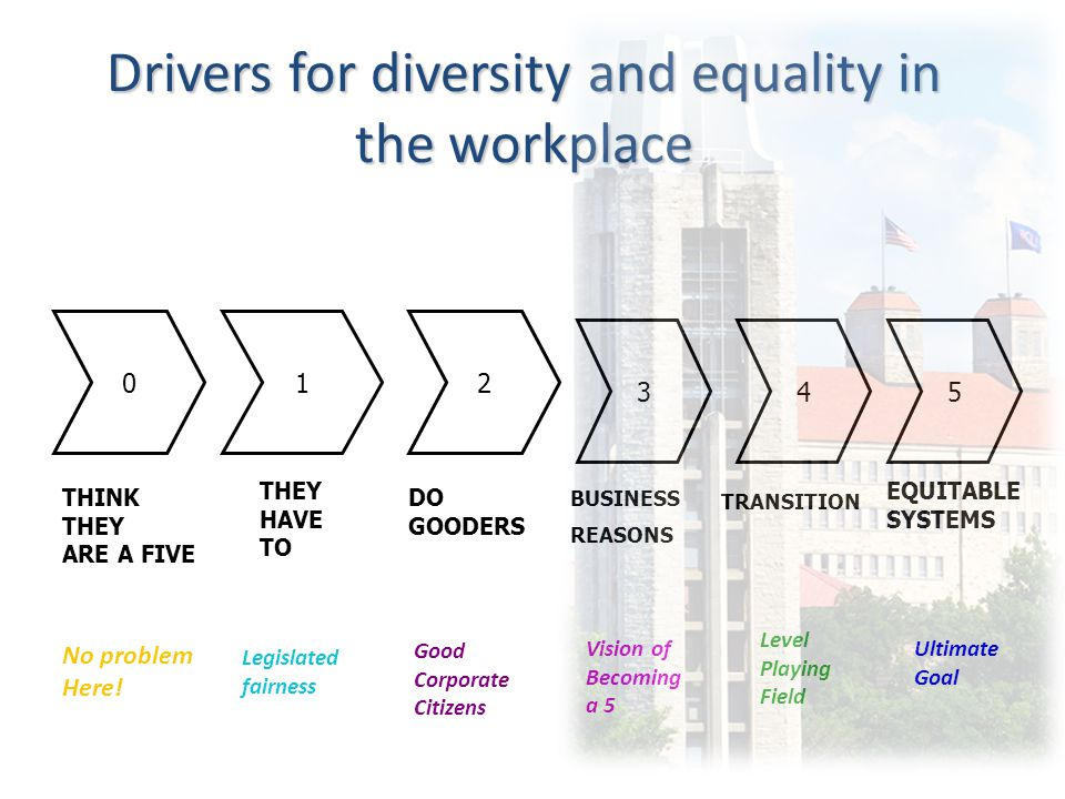 Drivers for diversity and equality in the workplace