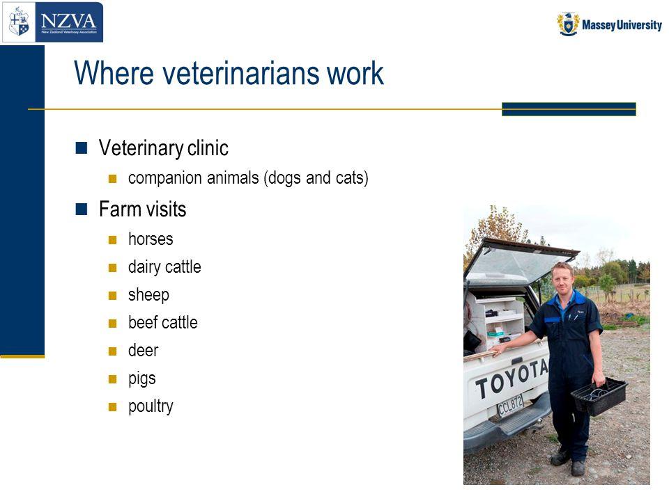 Where veterinarians work
