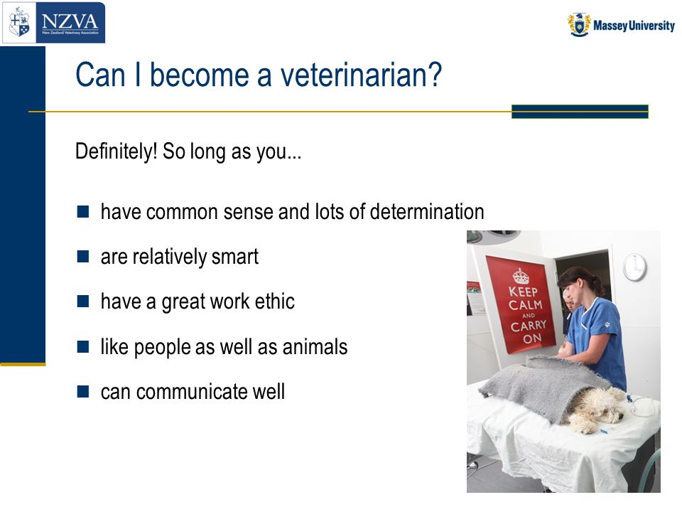 Can I become a veterinarian