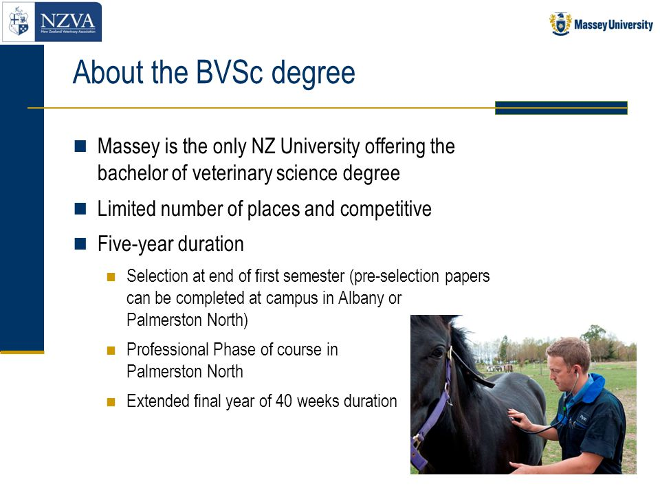 About the BVSc degree Massey is the only NZ University offering the bachelor of veterinary science degree.