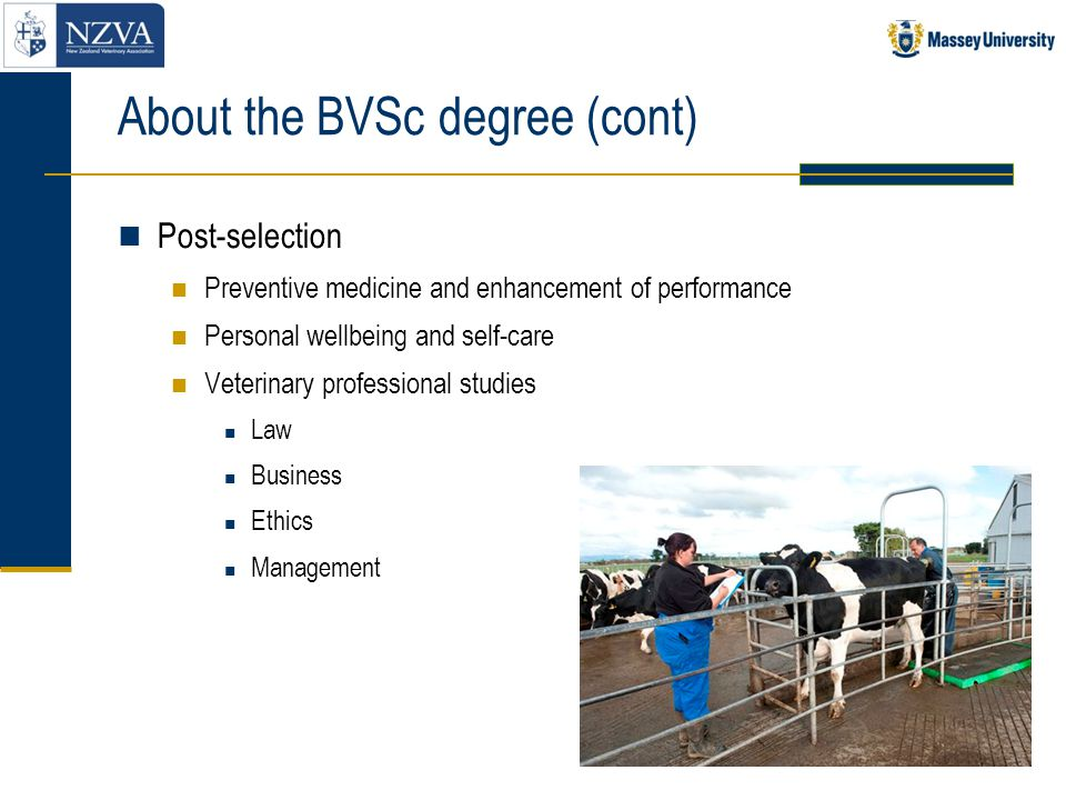 About the BVSc degree (cont)
