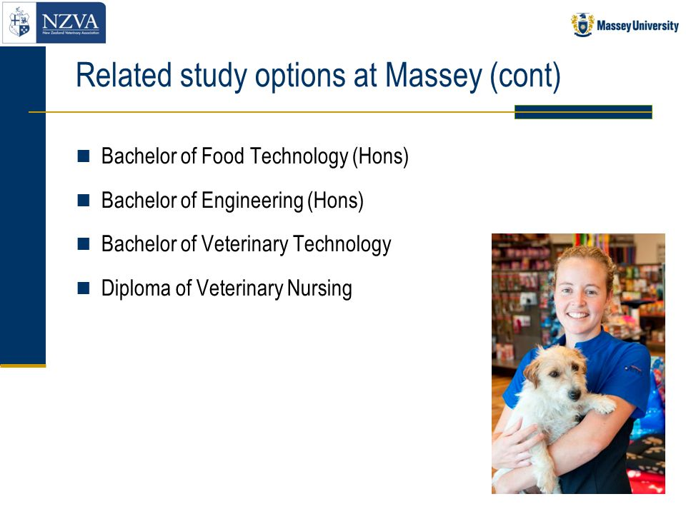 Related study options at Massey (cont)