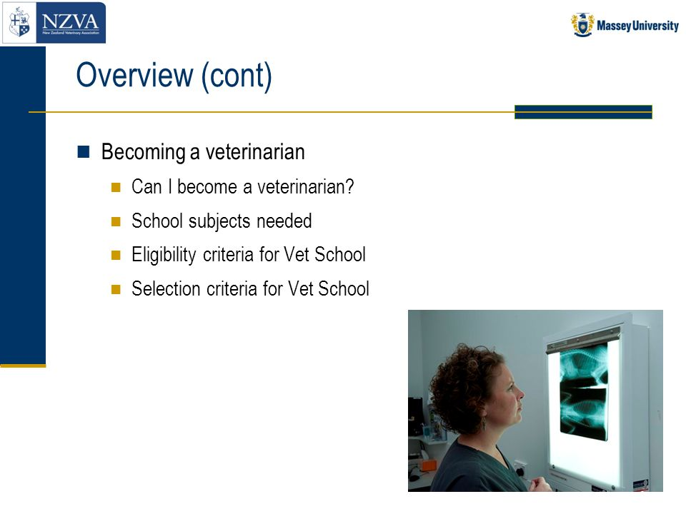 Overview (cont) Becoming a veterinarian Can I become a veterinarian