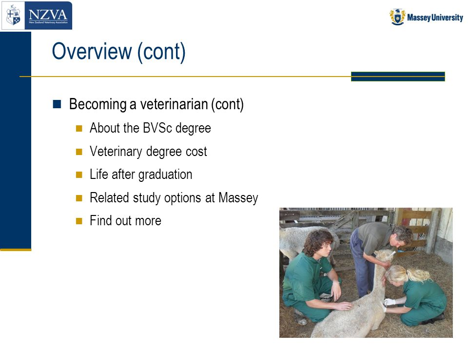 Overview (cont) Becoming a veterinarian (cont) About the BVSc degree