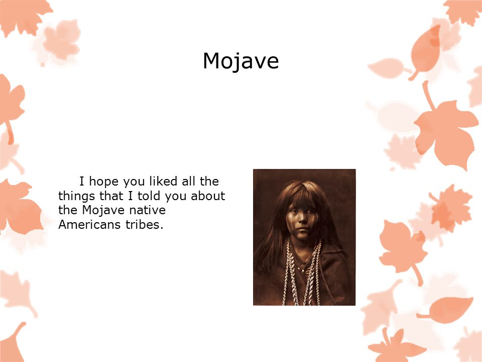 Mojave I hope you liked all the things that I told you about the Mojave native Americans tribes.