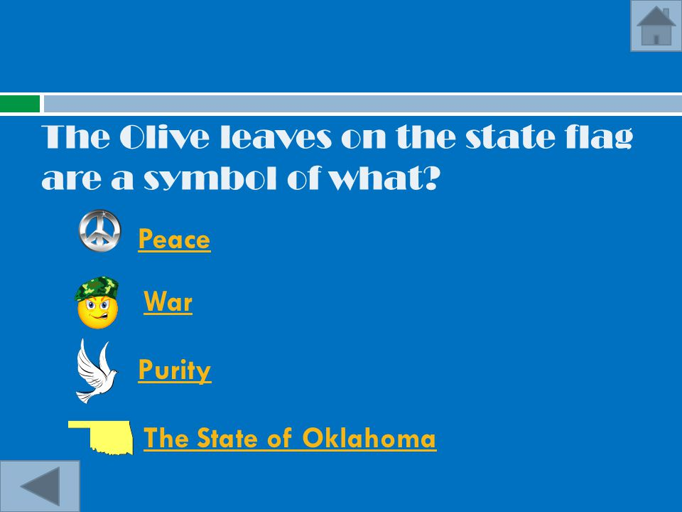 The Olive leaves on the state flag are a symbol of what