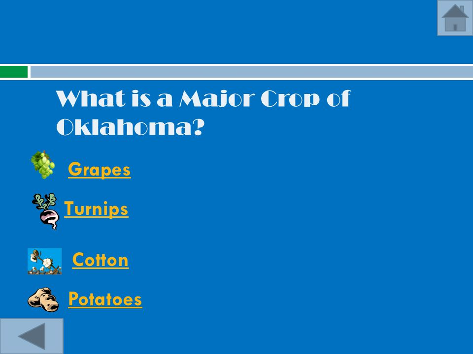 What is a Major Crop of Oklahoma