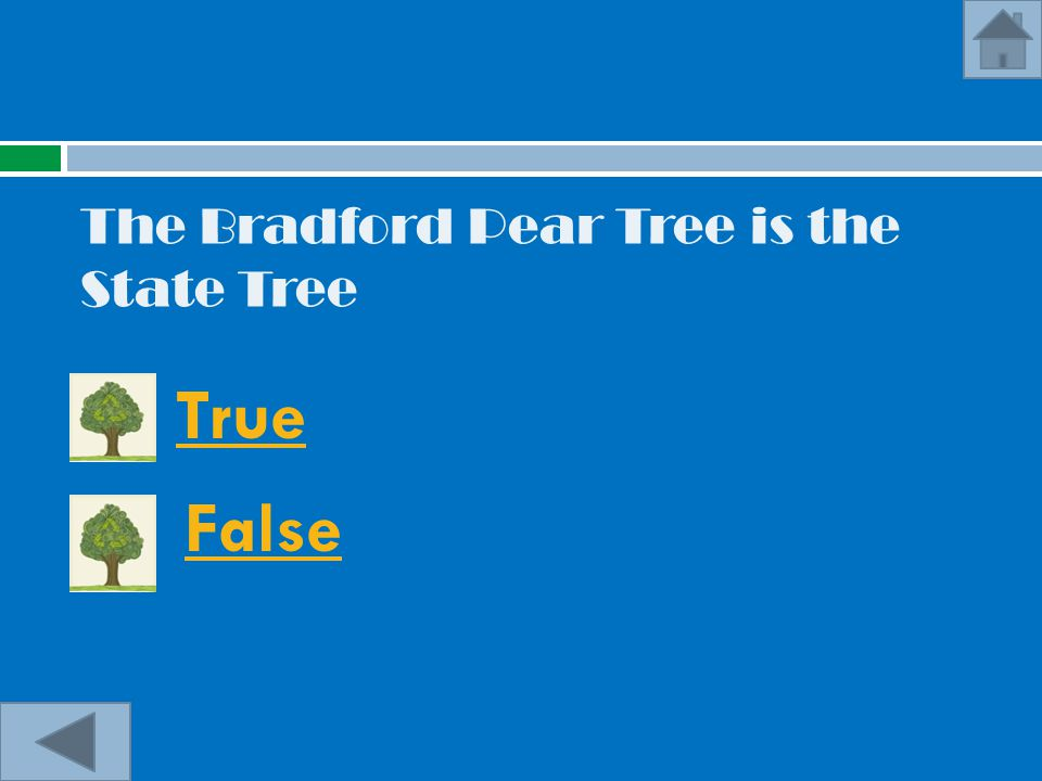 The Bradford Pear Tree is the State Tree