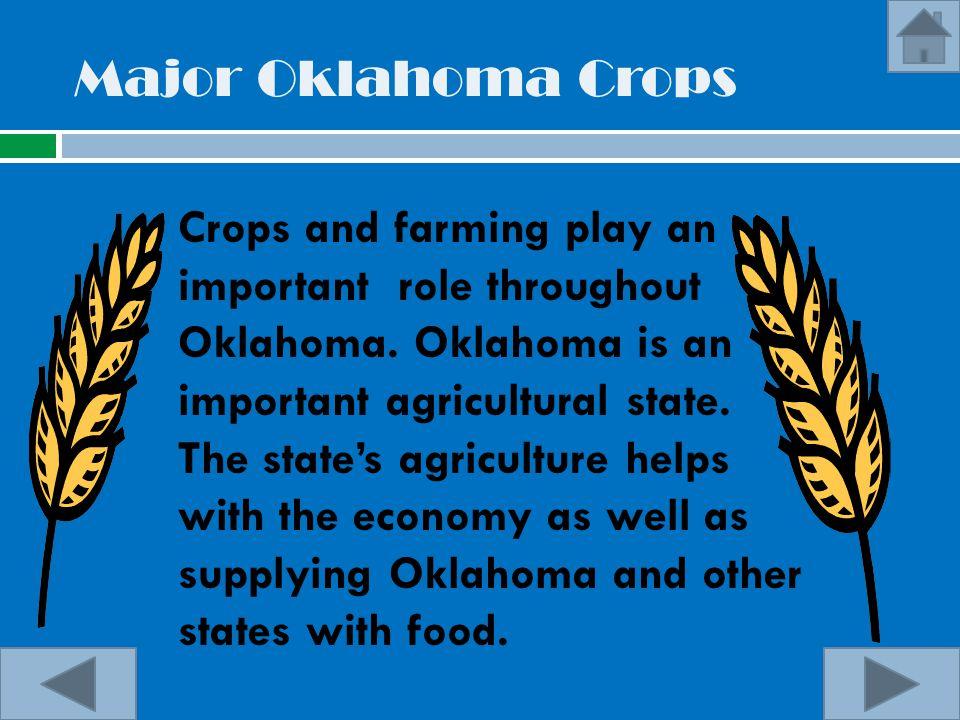 Major Oklahoma Crops