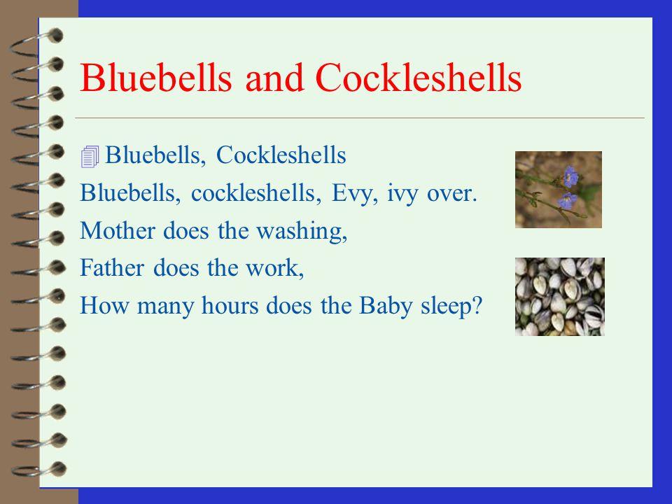 Bluebells and Cockleshells