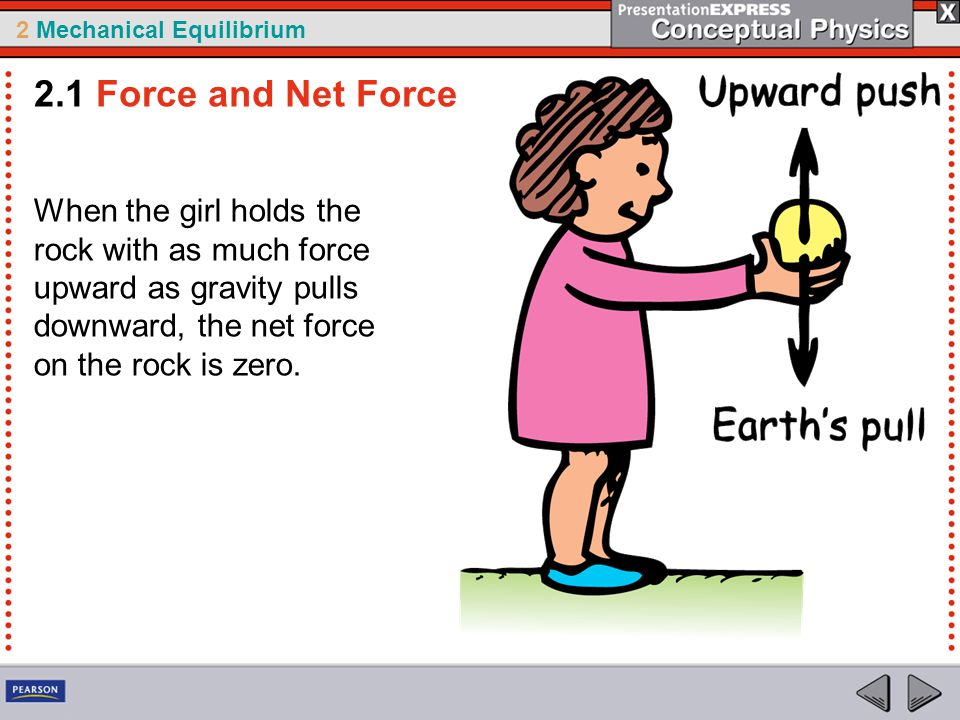 2.1 Force and Net Force When the girl holds the rock with as much force upward as gravity pulls downward, the net force on the rock is zero.