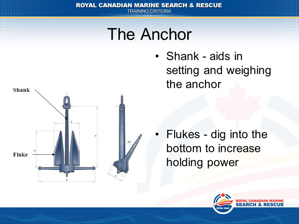The Anchor Shank - aids in setting and weighing the anchor