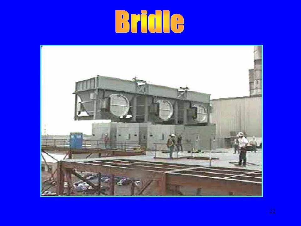 Bridle