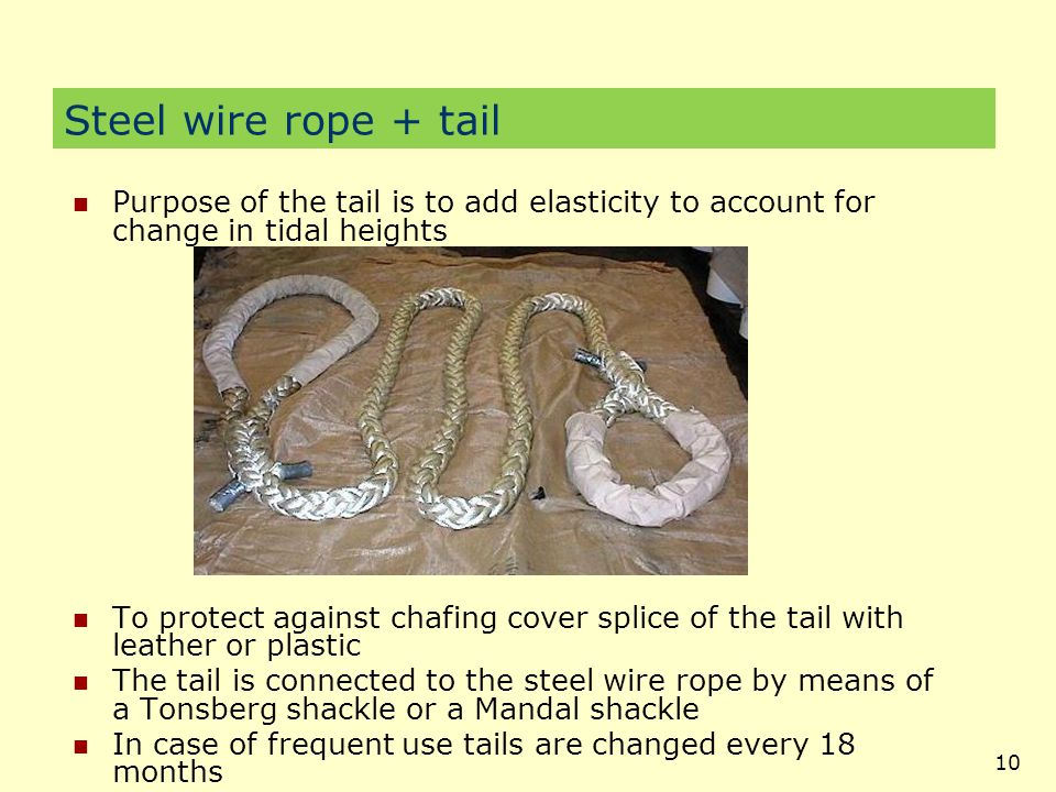 Steel wire rope + tail Purpose of the tail is to add elasticity to account for change in tidal heights.