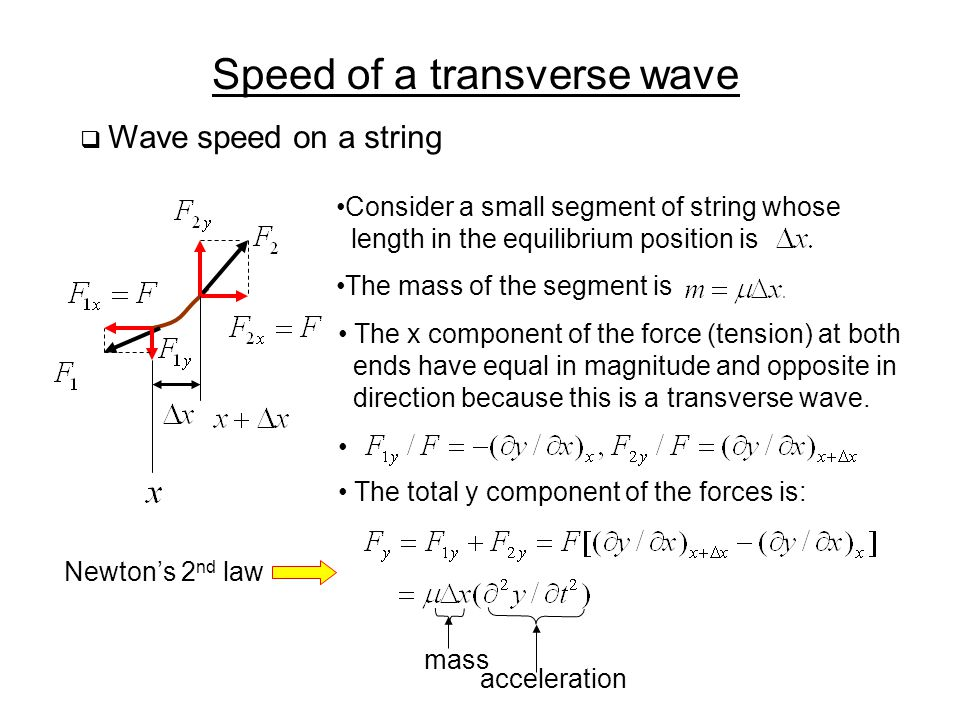 Speed of a transverse wave
