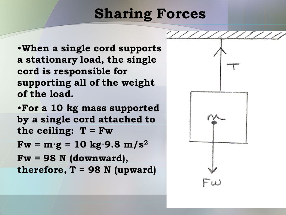 Sharing Forces When a single cord supports a stationary load, the single cord is responsible for supporting all of the weight of the load.