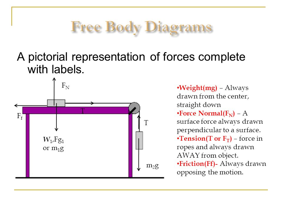 Free Body Diagrams A pictorial representation of forces complete with labels. FN. Weight(mg) – Always drawn from the center, straight down.