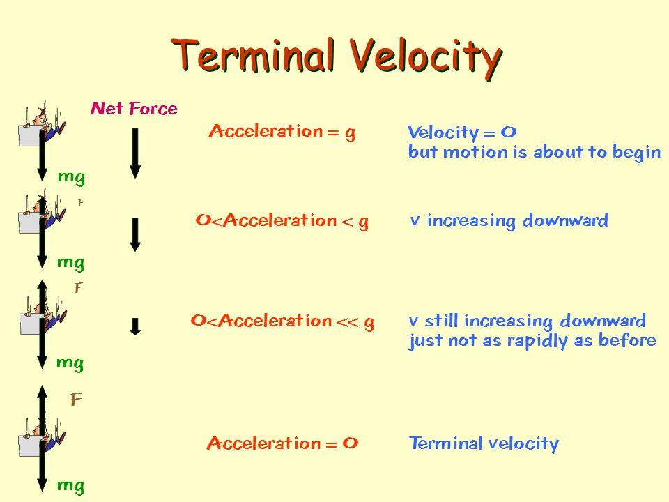 Terminal Velocity Net Force Acceleration = g Velocity = 0