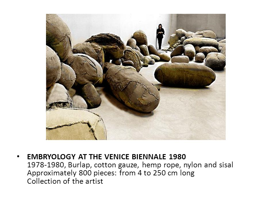 EMBRYOLOGY AT THE VENICE BIENNALE 1980 1978-1980, Burlap, cotton gauze, hemp rope, nylon and sisal Approximately 800 pieces: from 4 to 250 cm long Collection of the artist