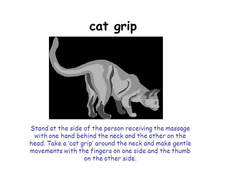 cat grip