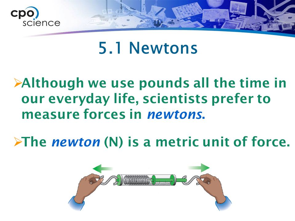 5.1 Newtons Although we use pounds all the time in our everyday life, scientists prefer to measure forces in newtons.