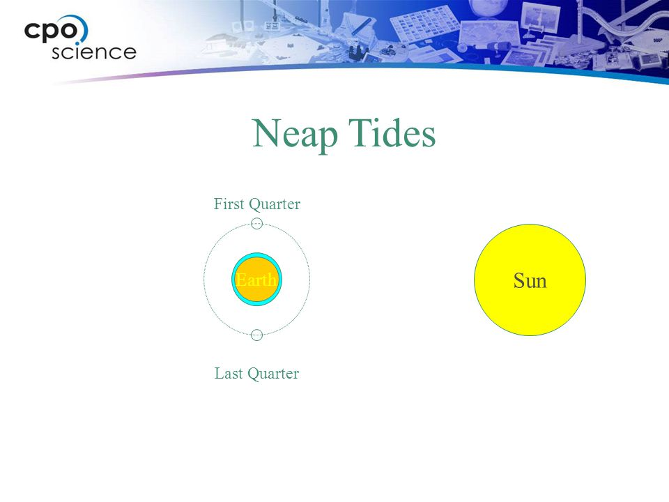 Neap Tides First Quarter Sun Earth Last Quarter