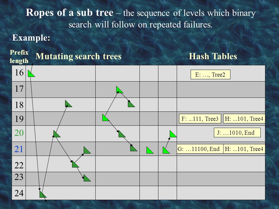 Ropes of a sub tree – the sequence of levels which binary search will follow on repeated failures.