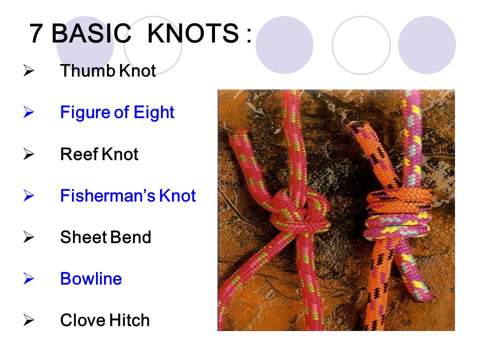 7 BASIC KNOTS : Thumb Knot Figure of Eight Reef Knot Fisherman's Knot