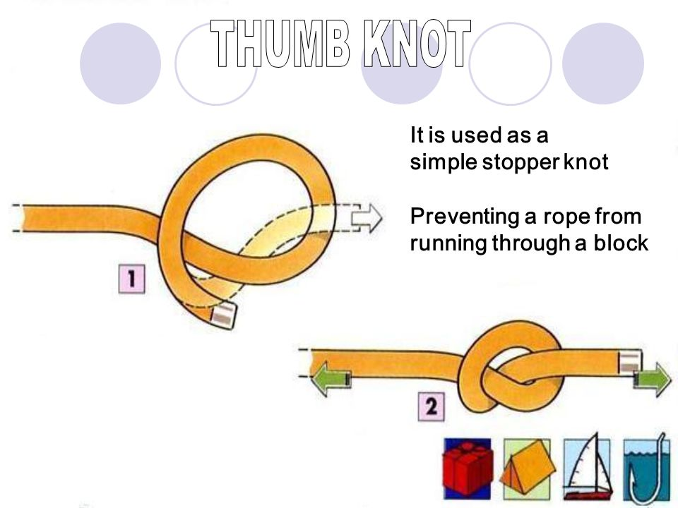 THUMB KNOT It is used as a simple stopper knot Preventing a rope from